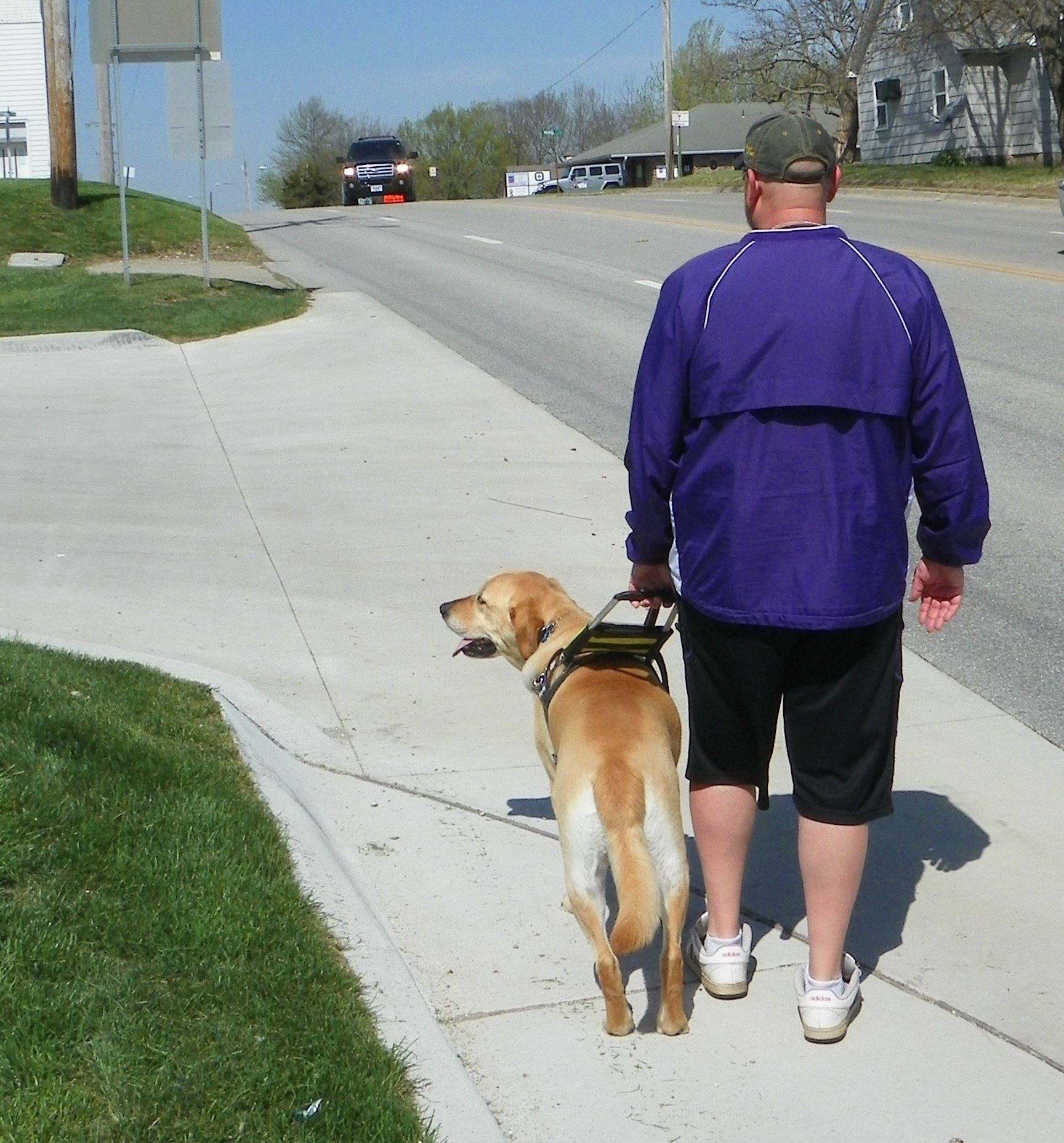 Bill Murphy walks with his service dog in Louisburg.